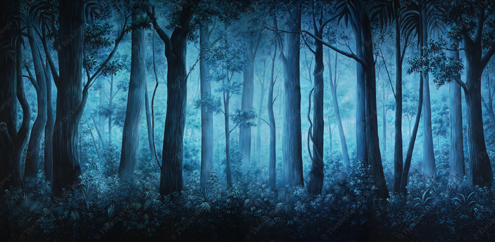 Foggy Forest Daybreak