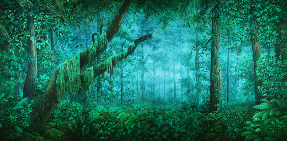 Tropical Forest Daybreak