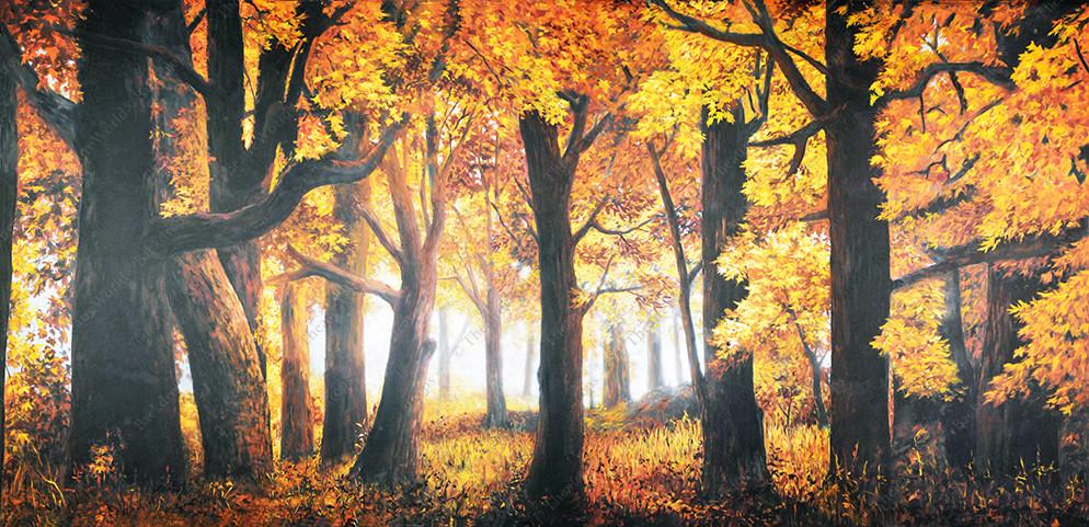 Autumn Forest Daybreak