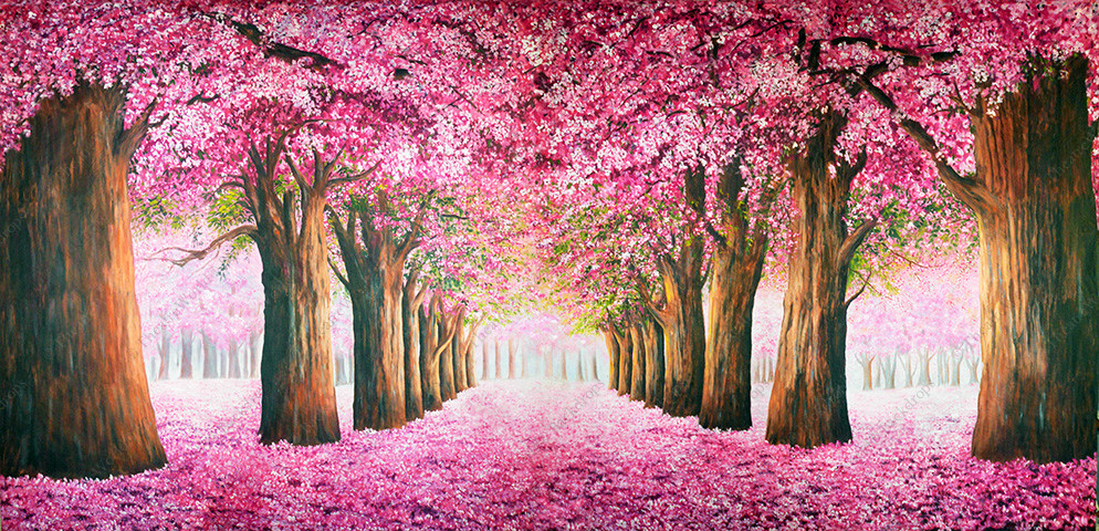 Cherry Blossom Trail