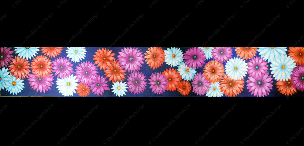 Daisies and Flowered Grass Header