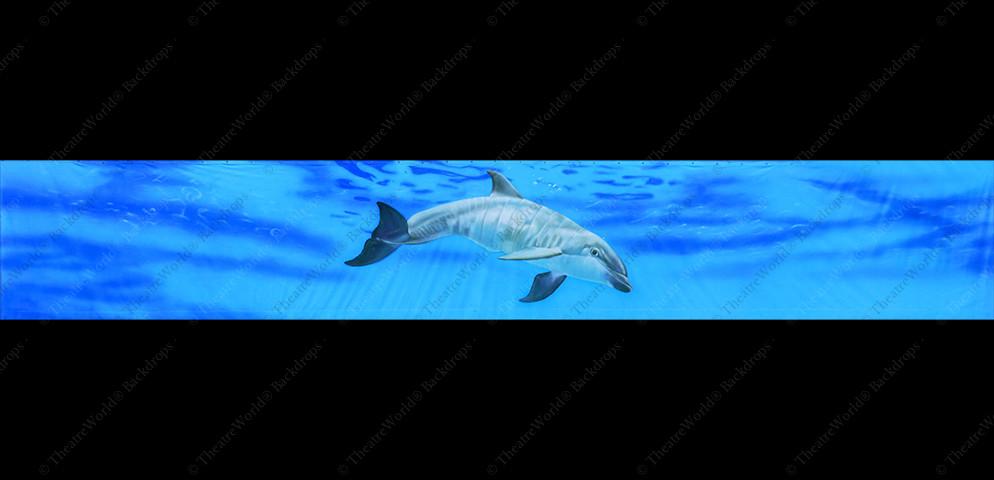 Under the Sea Header - B
