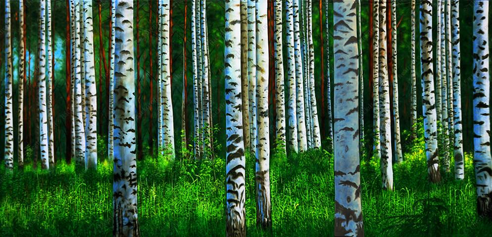 Quiet Birch Grove