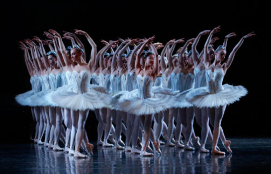 Find tulle and tragedy in The Australian Ballet's Swan Lake