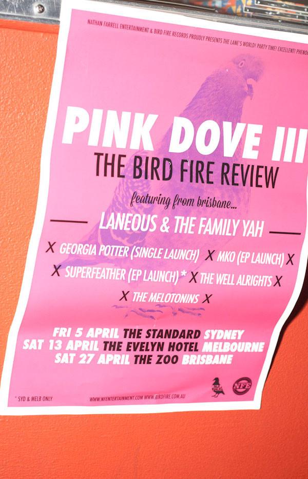 Pink Dove III