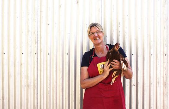 Ingrid Dimock, City Chicks, My City Garden