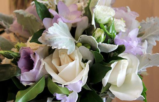 TWE Francesca's Flowers, Paddington