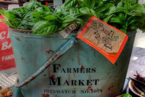 Jan Powers Brisbane City Farmers Markets