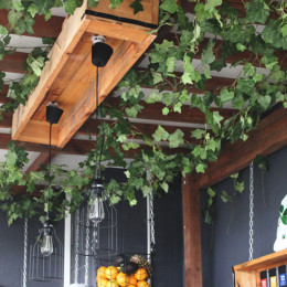 Vine adds a healthy option to East Brisbane's brunch scene