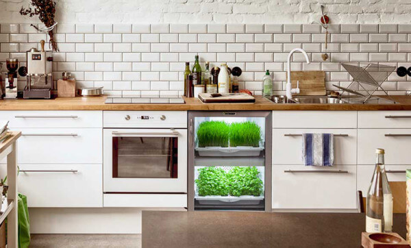 Grow perfect herbs indoors with the Urban Cultivator