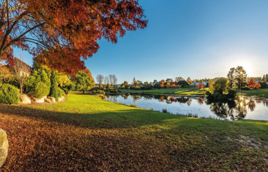 The Roadtrip Series: indulge your senses in Stanthorpe and surrounds