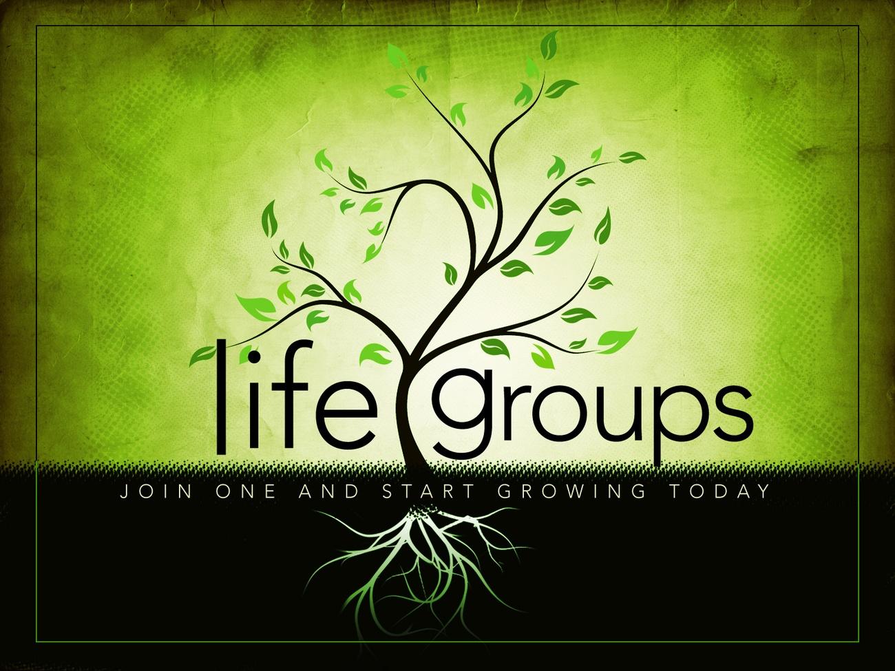 Life groups pp slide original