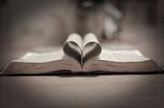 Pastors-heart-medium-medium