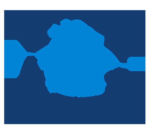 Fbcss logo 500 original