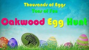 Egg%20hunt1%20modified-medium