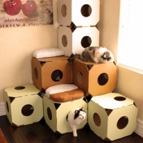 Modular Cat Condos by Catty Stacks