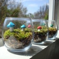 Mushroom Garden Terrarium