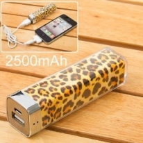Power Charger Battery Bank for Iphone 4/4s and Camera