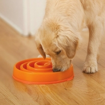 Slo-Bowl Maze Dog Bowl