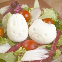 Animal Plastic Egg Mold