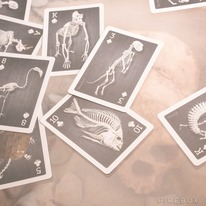 Cool Skeletons Playing Cards