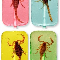 REAL Scorpion Lollipop! Assorted Flavors Available