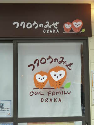 Owl cafe: sip coffee with an owl on your shoulder