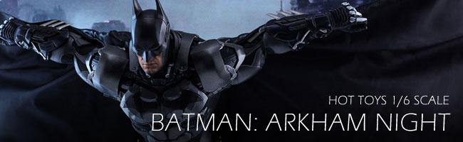 Hot Toys Batman Arkham City 1/6 Scale Collectible