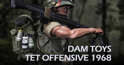 DAM Vietnam Tet Offensive