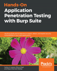 Hands-On Application Penetration Testing with Burp Suite Image