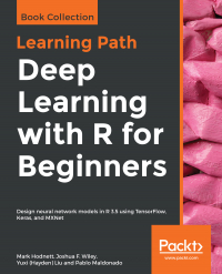 Deep Learning with R for Beginners Image