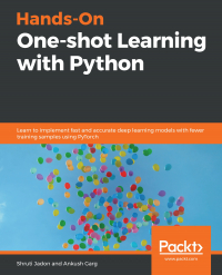 Hands-On One-shot Learning with Python Image