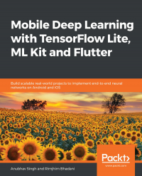 Mobile Deep Learning with TensorFlow Lite, ML Kit and Flutter Image