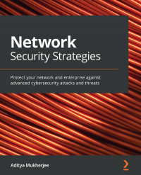 Network Security Strategies Image