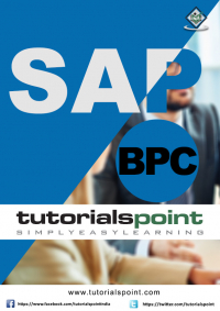 SAP BPC Tutorial Image