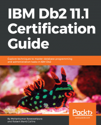 IBM Db2 11.1 Certification Guide Image