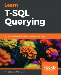 Learn T-SQL Querying Image