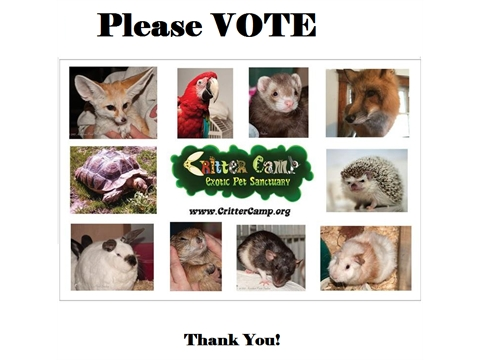 Critter Camp Exotic Pet Sanctuary