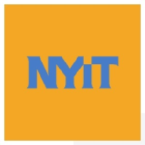 nyit college essay question