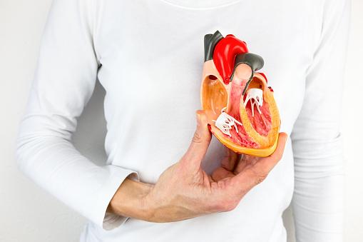 vascular care cardiac surgery