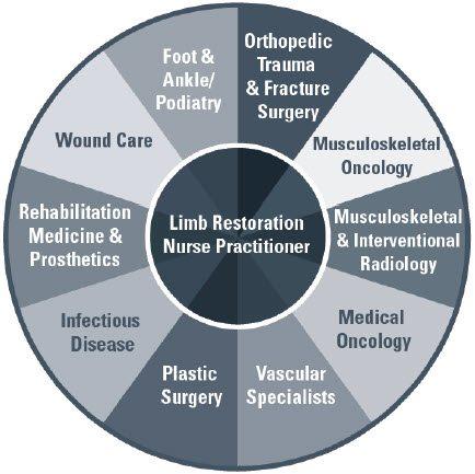 limb restoration program diagram