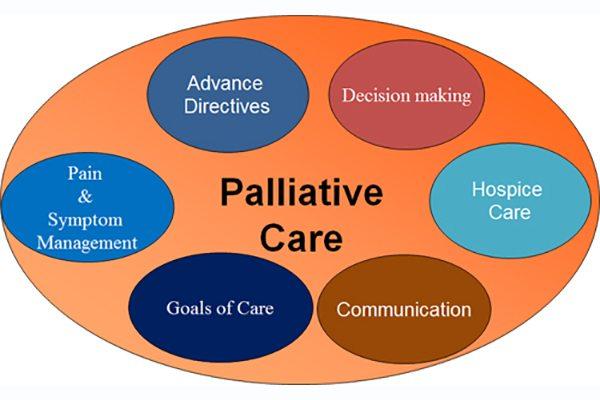 palliative care components: