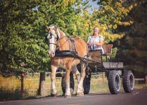 Veronica Wilkins rides in a cart pulled by her large horse, Mac.