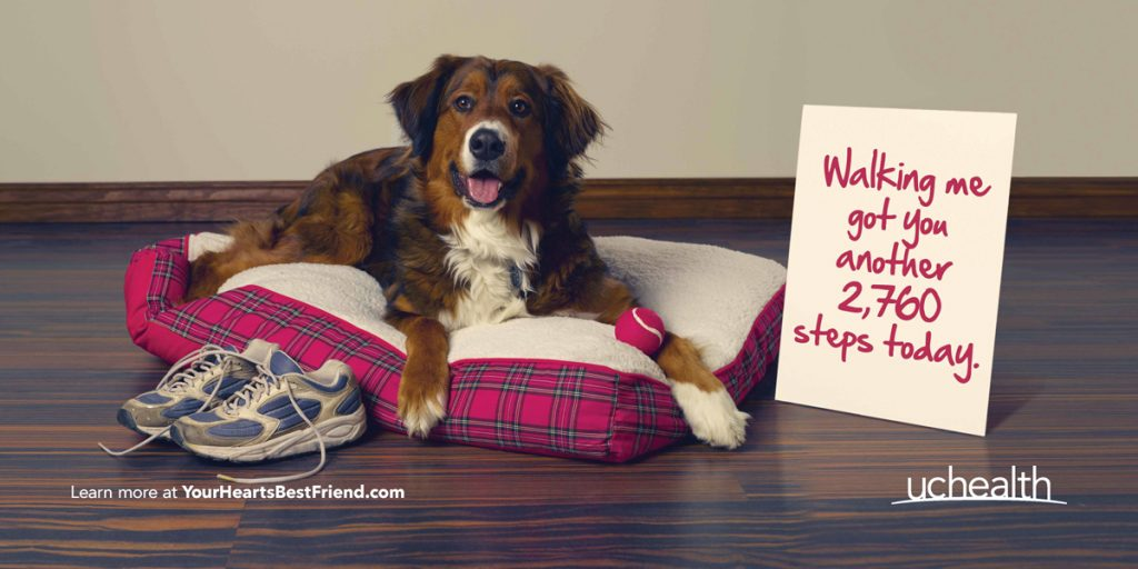 "UCHealth's new campaign is a picture of a dog on a dog bet with a sign that says, ""walking me got you another 2,760 steps today."""
