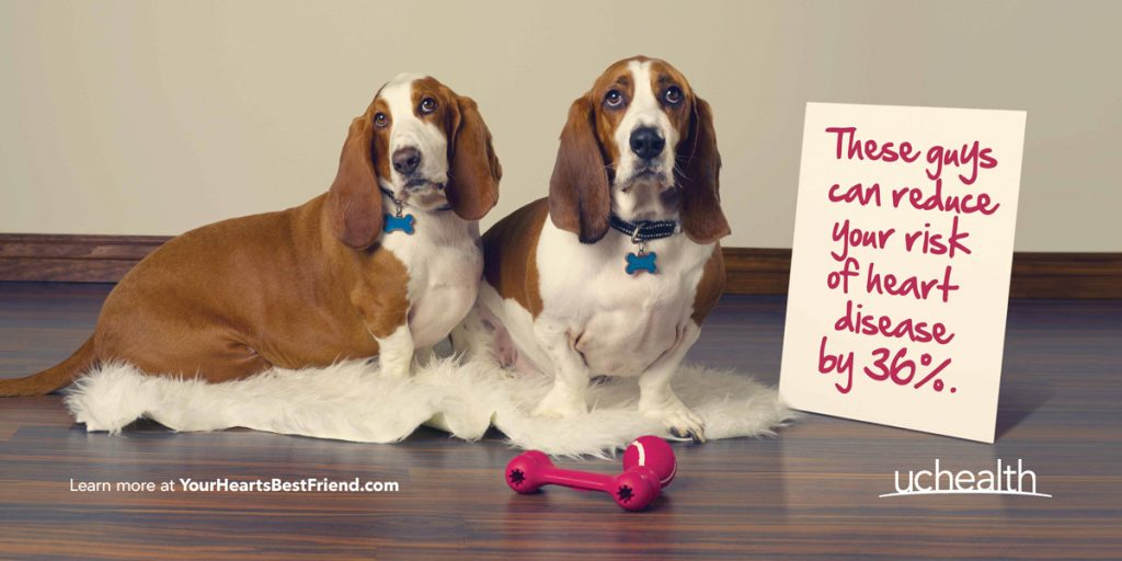 two dogs with a sign that reads: These guys can reduce your risk of heart disease by 36 percent.