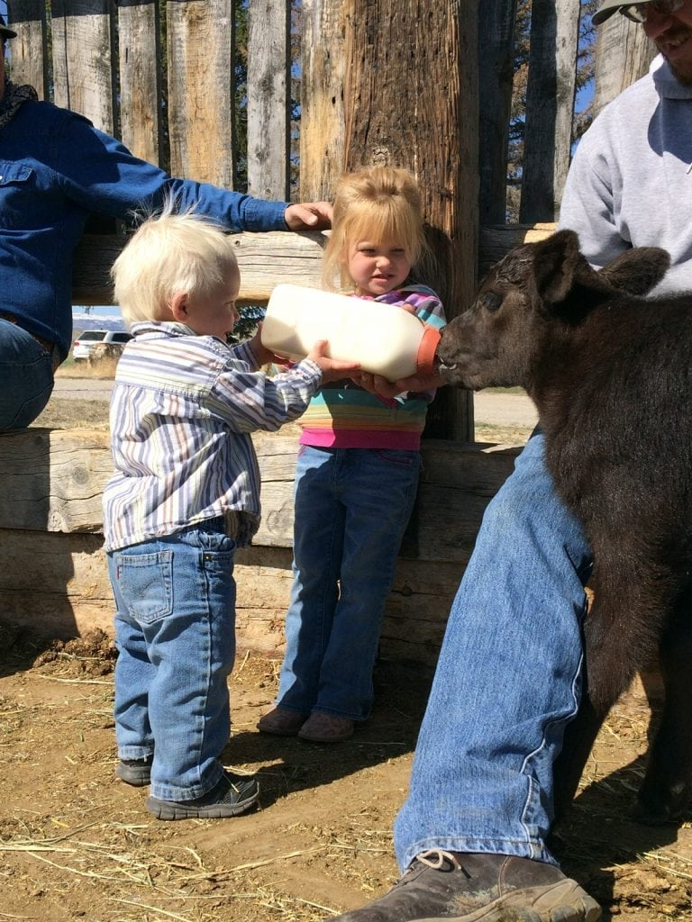 Charli and Hudson Chant feed a calf on their Wyoming ranch. Photo courtesy of the Chant family.