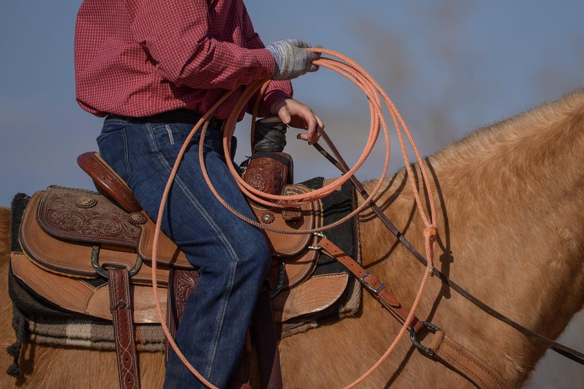 Jason-Stoneback-side-view-with-orange-rope-sized-for-slideshow