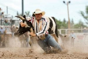 A steer wrestler kicks up dirt as he wrestles at steer to the ground in the arena at Cheyenne Frontier Days.