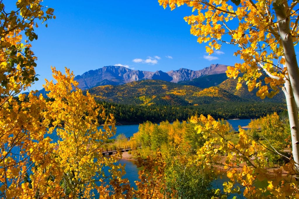 A view of golden aspen trees in the foreground with Crystal Reservoir and Pikes Peak in the background.
