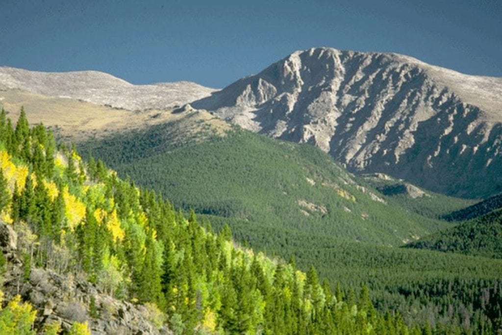 A steep slope with some yellow aspens and green pines with a peak called Mummy Mountain in the background.